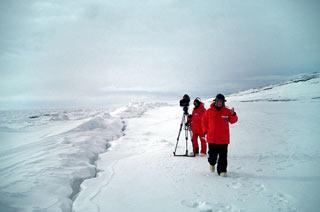 Scena del film Encounters of the end of the world di Werner Herzog in concorso al Trento Film Festival 2008