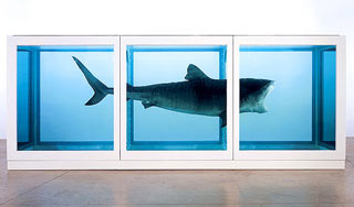 Physical Impossibility of Death in the Mind of Someone Living di Damian Hirst