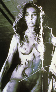 Carolee Schneemann, Eye Body