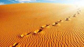 Impronte sul deserto