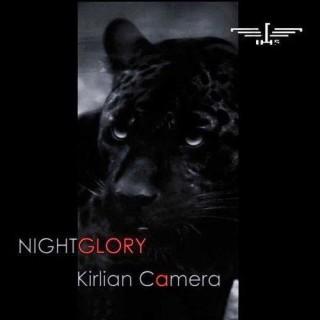 Copertina di Nightglory