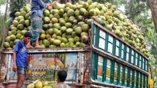Camion di coconut