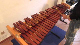 Suonatore di xilofono