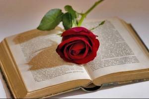Libri e rose (Sant Jordi)