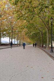 Lucca 2020 mura vuote